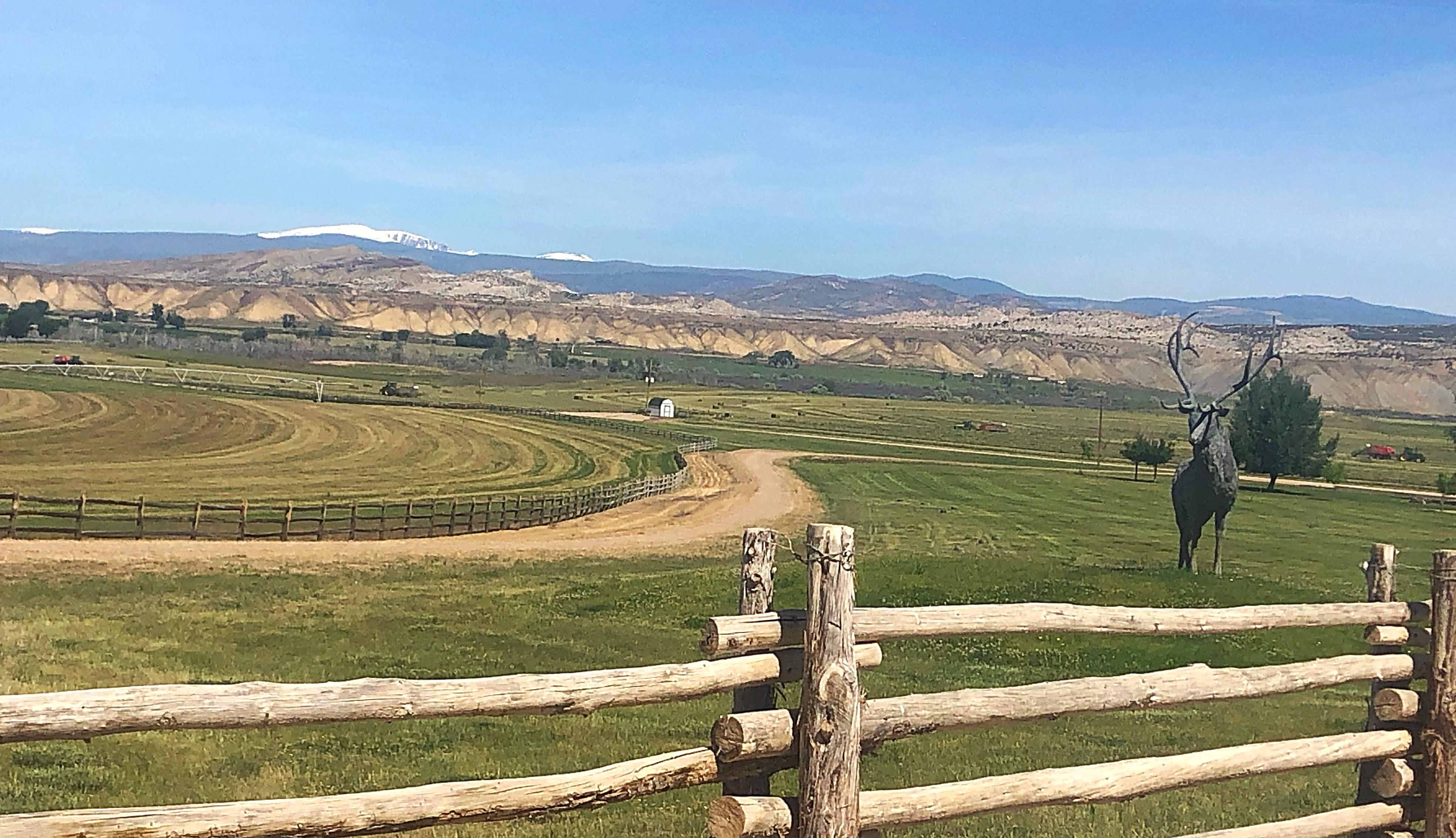 2019 Hay - Escalante Ranch Utah