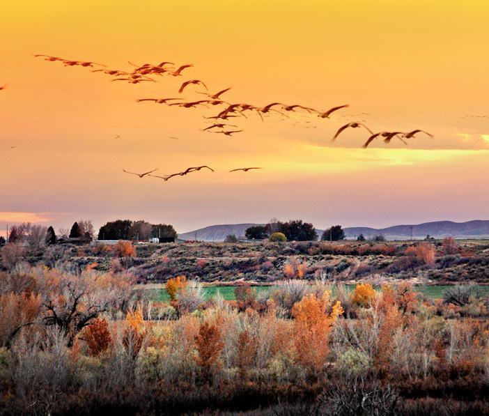 Escalante Ranch Utah Sunset
