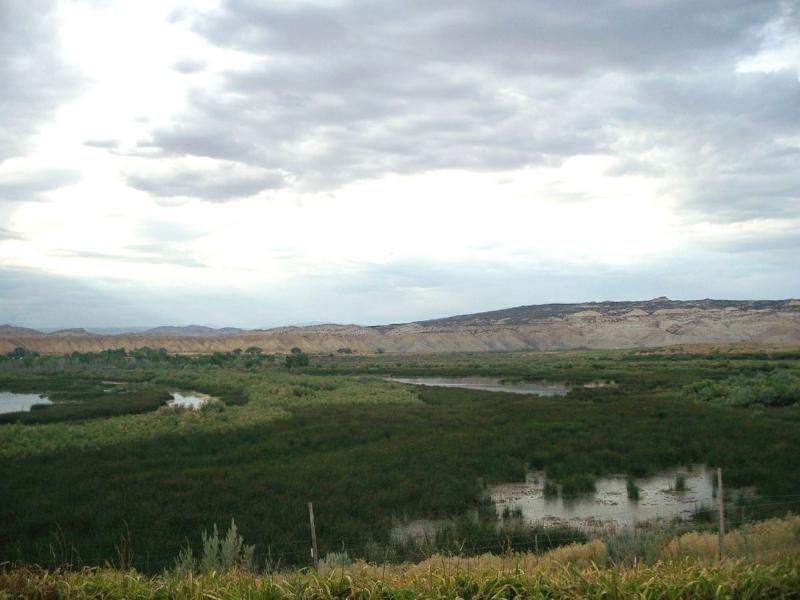 Escalante Ranch View