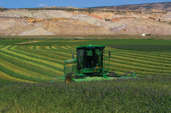 Escalante Ranch Hay Production - Jensen UT
